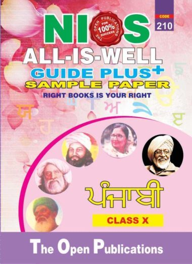 210 PUNJABI MEDIUM ALL IS WELL GUIDE PLUS + SAMPLE PAPER