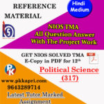 nios-solved-assignment-political-science-317-hindi-medium