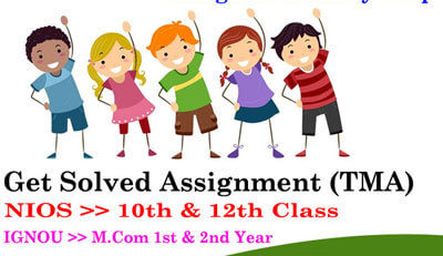 nios solved assignment